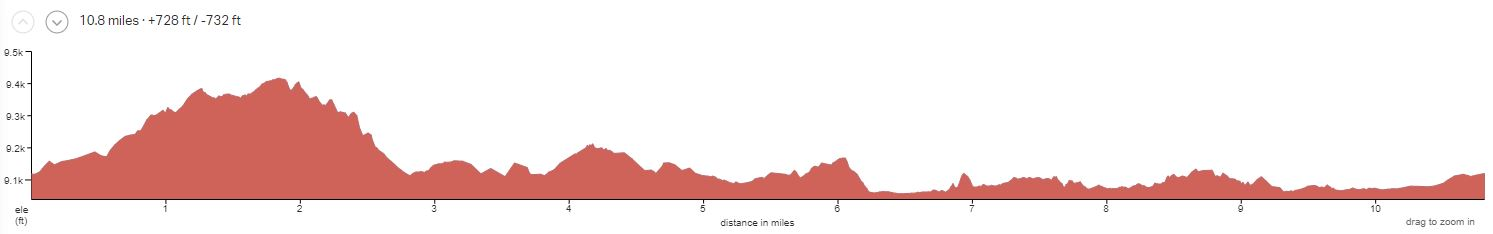BZ4 Day 1 Elevation Profile