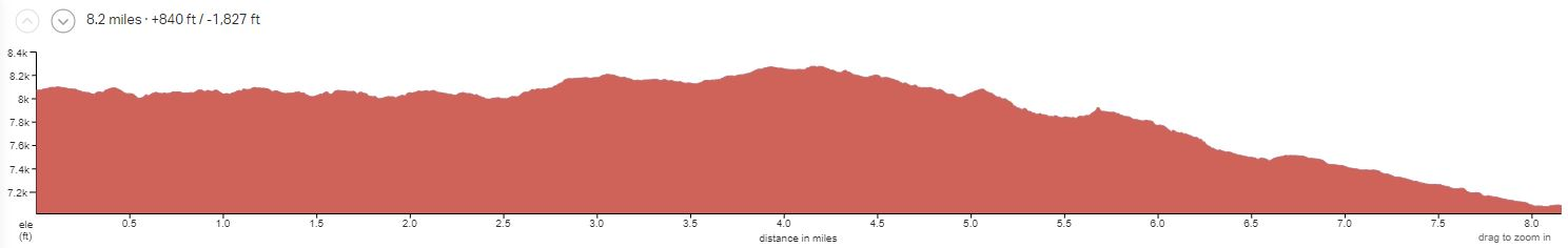 BZ4 Day 4 Elevation Profile