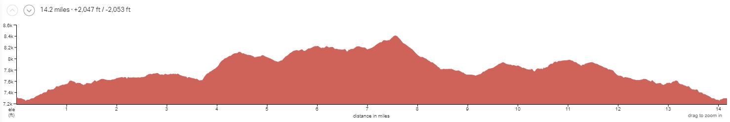 Durango Intermediate Day 4 Elevation Profile